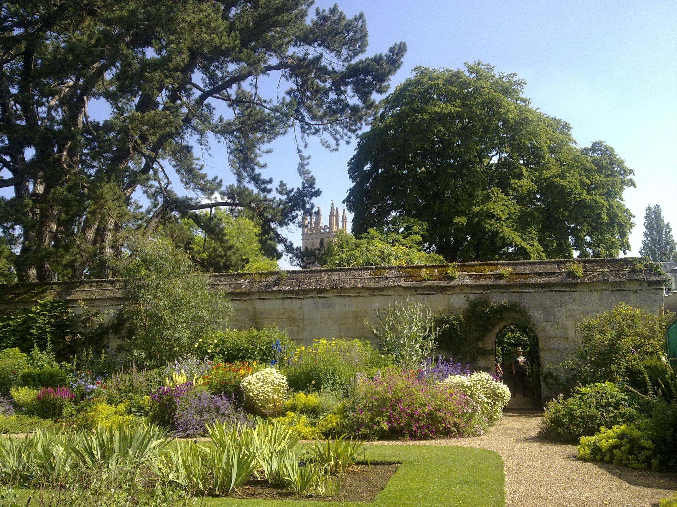 university-of-oxford-botanic-garden